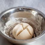 da pasta madre liquida a pasta madre solida in quattro ore