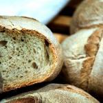 Forme di pane, antico sapore genuino