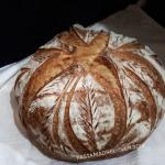 molisanello, pane di semola rimacinata