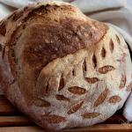 pane con grano tenero solina