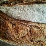 Pane del lavoratore - Dal frigo al forno