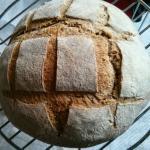 Pane di grano tenero integrale