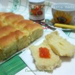 Parker house rolls con pasta madre