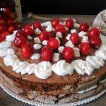 torta al cioccolato con ciliegie e amarene