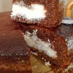 torta cacao e cocco (bimby)