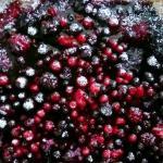 Torta rustica ai frutti di bosco