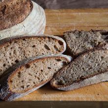 Pane antico di Sicilia con farina di Tumminia