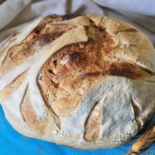 Pane senza impasto con grano tenero tipo 2