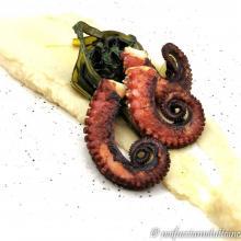 Polpo croccante alla piastra con fave e cicorietta