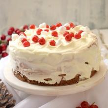 Torta gelato fondente con namelaka al cioccolato bianco
