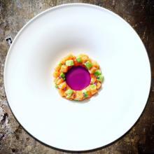 circle…tartare di salmone e avocado al sakè