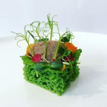 giardino d'estate… spugna agli spinaci con paté di fegato alla veneziana