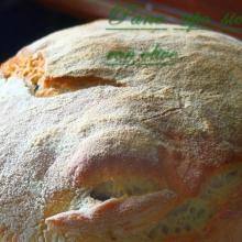 Pane tipo siciliano