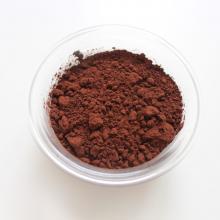 Pasta madre acida al cioccolato
