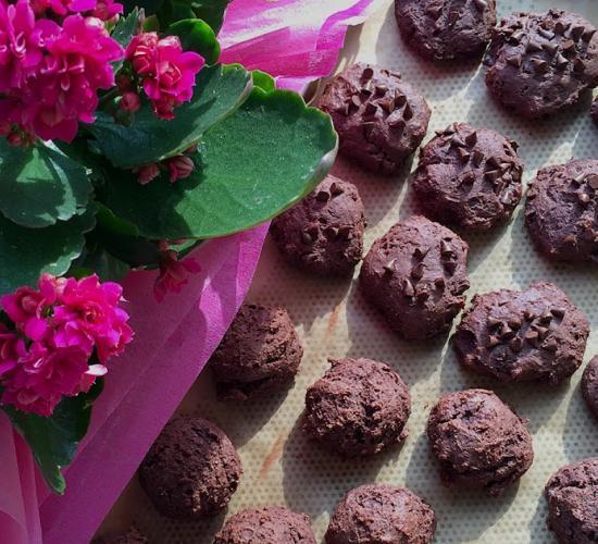 deliziosi con ricotta e cacao