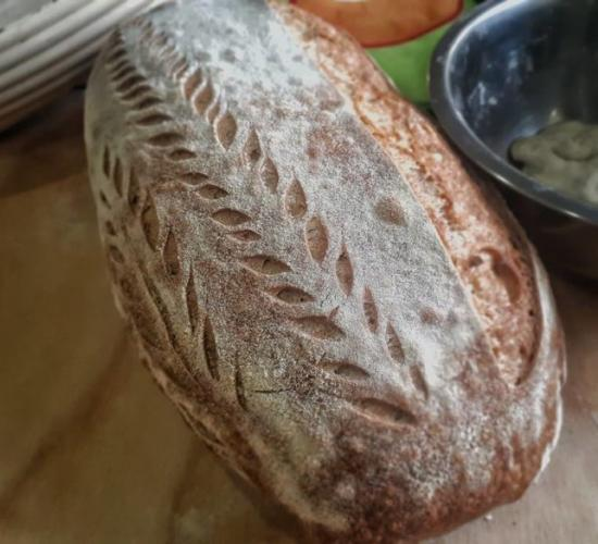 filoncino di pane con grano tenero di tipo 1 e pasta di riporto