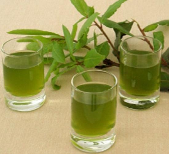 Liquore di alloro (bimby)