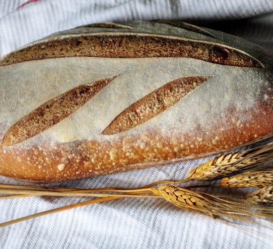 Primo pane del 2016
